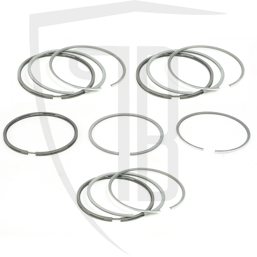 Piston rings set Std for Evo 2